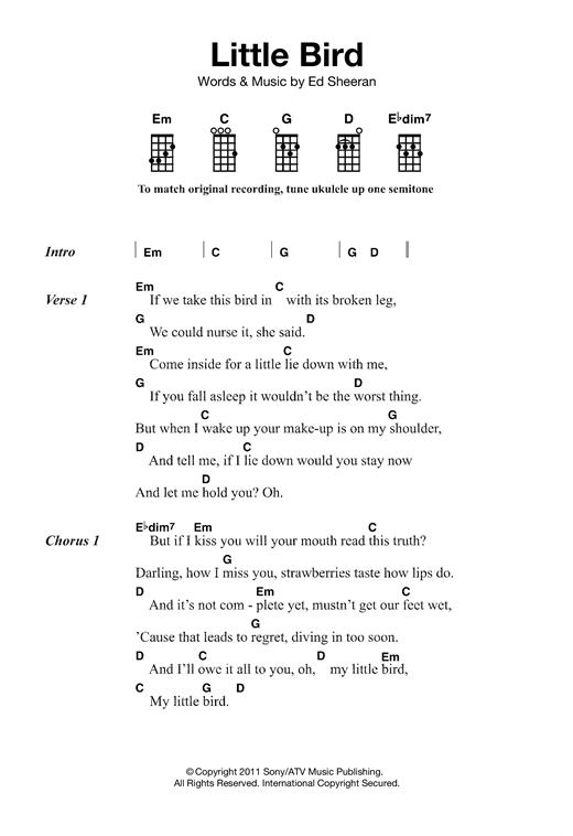 Ed Sheeran Little Bird Sheet Music Notes Chords Printable Pop