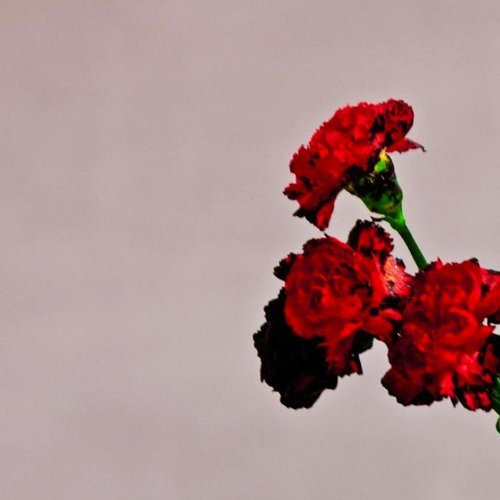 John Legend, Who Do We Think We Are, Easy Piano