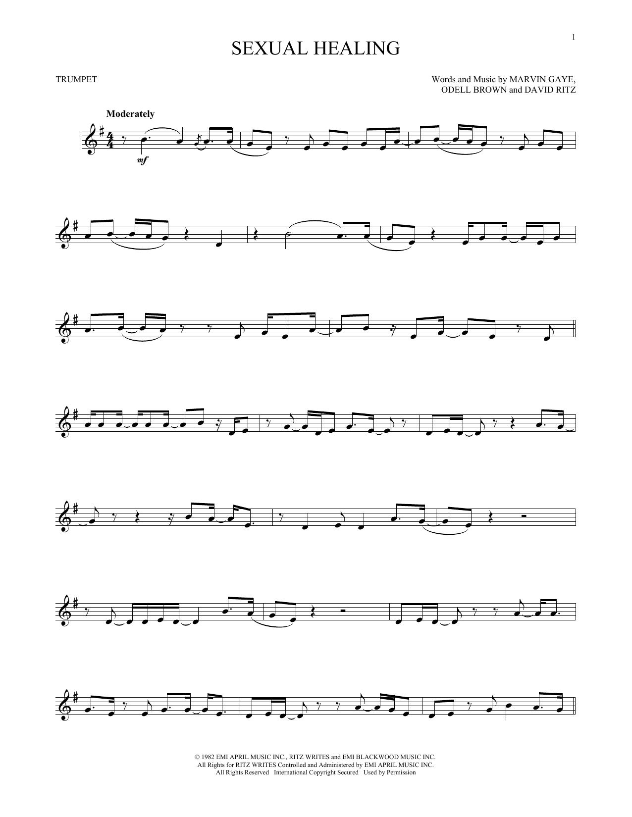 Sexual healing chords