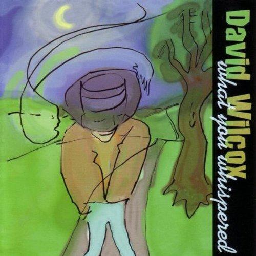 David Wilcox, Deeper Still, Guitar Tab