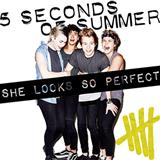 Download or print 5 Seconds of Summer She Looks So Perfect Sheet Music Printable PDF 2-page score for Pop / arranged Keyboard (Abridged) SKU: 118979.
