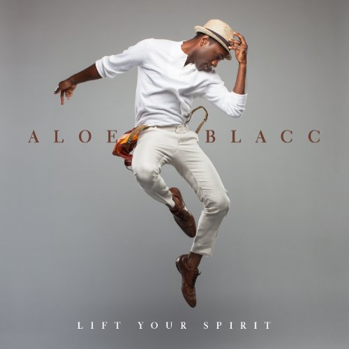 Easily Download Aloe Blacc Printable PDF piano music notes, guitar tabs for Piano, Vocal & Guitar (Right-Hand Melody). Transpose or transcribe this score in no time - Learn how to play song progression.