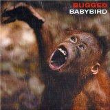 Download Babybird 'Fireflies' Printable PDF 2-page score for Pop / arranged Guitar Chords/Lyrics SKU: 40521.