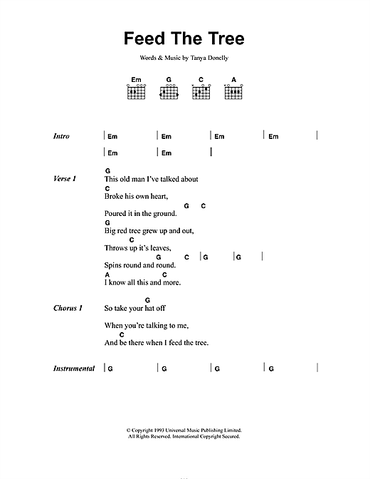 Belly Feed The Tree sheet music notes and chords. Download Printable PDF.