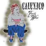 Download or print Calexico Across The Wire Sheet Music Printable PDF 3-page score for Country / arranged Guitar Chords/Lyrics SKU: 100743.