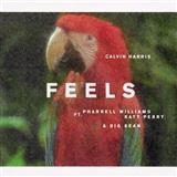 Download Calvin Harris 'Feels (feat. Pharrell Williams, Katy Perry & Big Sean)' Printable PDF 6-page score for Pop / arranged Easy Piano SKU: 125450.