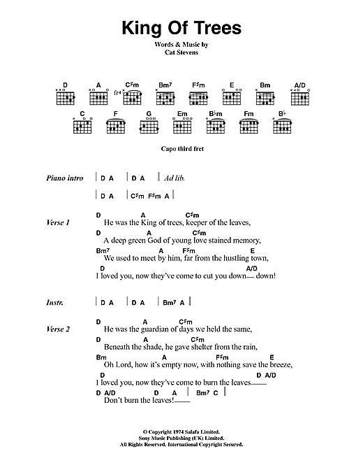 Cat Stevens King Of Trees sheet music notes and chords. Download Printable PDF.