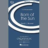 Download David Brunner 'Born Of The Sun' Printable PDF 14-page score for Concert / arranged TBB Choir SKU: 69708.