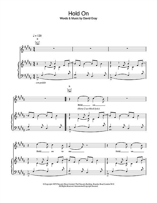 David Gray Hold On sheet music notes and chords