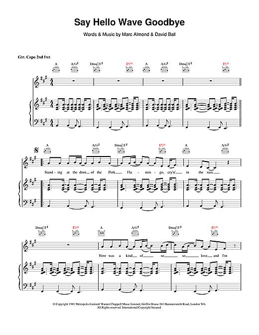 David Gray Say Hello, Wave Goodbye sheet music notes and chords. Download Printable PDF.