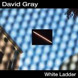 Download David Gray 'White Ladder' Printable PDF 7-page score for Rock / arranged Guitar Tab SKU: 19123.