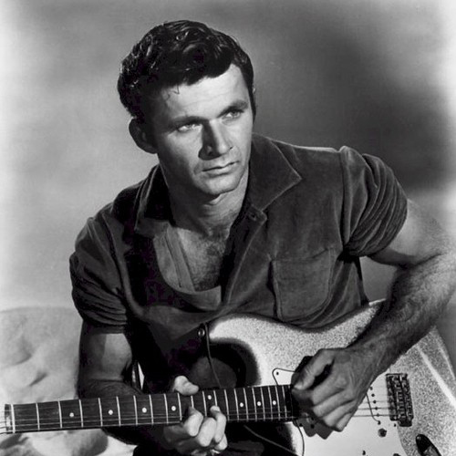 Easily Download Dick Dale Printable PDF piano music notes, guitar tabs for Guitar Tab. Transpose or transcribe this score in no time - Learn how to play song progression.