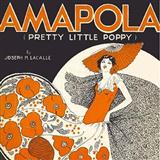 Download or print Gary Meisner Amapola (Pretty Little Poppy) Sheet Music Printable PDF 3-page score for Standards / arranged Accordion SKU: 158005.