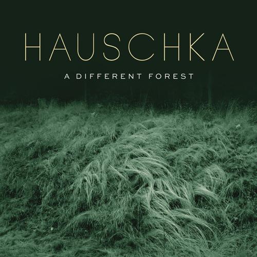 Hauschka, Everyone Sleeps, Piano Solo