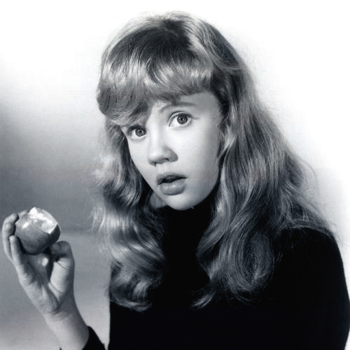 Easily Download Hayley Mills Printable PDF piano music notes, guitar tabs for Piano, Vocal & Guitar (Right-Hand Melody). Transpose or transcribe this score in no time - Learn how to play song progression.