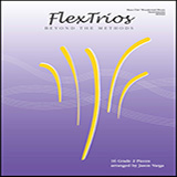 Download or print Jason Varga Flextrios - Beyond The Methods (16 Pieces) - Bass Clef Woodwind/brass Instruments Sheet Music Printable PDF 18-page score for Classical / arranged Brass Ensemble SKU: 478233.