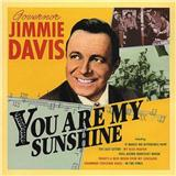 Download or print Jimmie Davis You Are My Sunshine Sheet Music Printable PDF 2-page score for Standards / arranged Big Note Piano SKU: 449890.