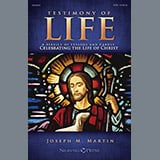Download Joseph M. Martin 'Testimony of Life - Flute' Printable PDF 18-page score for Advent / arranged Choir Instrumental Pak SKU: 322003.