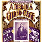 Download Maurice J. Gunsky 'A Bird In A Gilded Cage' Printable PDF 5-page score for Pop / arranged Piano, Vocal & Guitar (Right-Hand Melody) SKU: 122787.