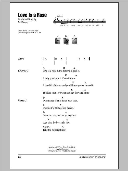 Neil Young Love Is A Rose sheet music notes and chords. Download Printable PDF.