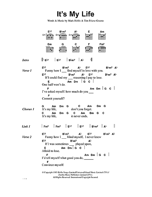 No Doubt It's My Life sheet music notes and chords. Download Printable PDF.