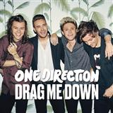 Download or print One Direction Drag Me Down Sheet Music Printable PDF 7-page score for Pop / arranged Piano, Vocal & Guitar + Backing Track SKU: 170420.