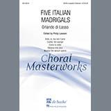 Download or print Orlando di Lasso Ardo, Si, Ma Non T'Amo (arr. Philip Lawson) Sheet Music Printable PDF 46-page score for Festival / arranged SATB Choir SKU: 161133.