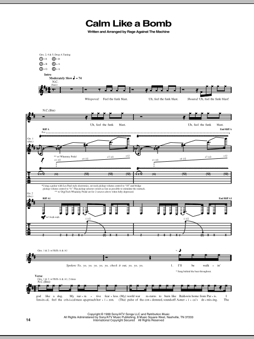 Rage Against The Machine Calm Like A Bomb sheet music notes and chords. Download Printable PDF.