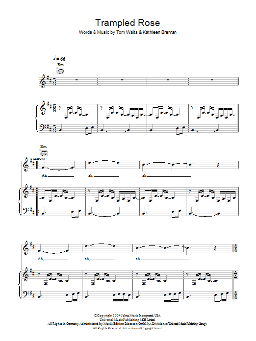 Robert Plant and Alison Krauss Trampled Rose sheet music notes and chords. Download Printable PDF.