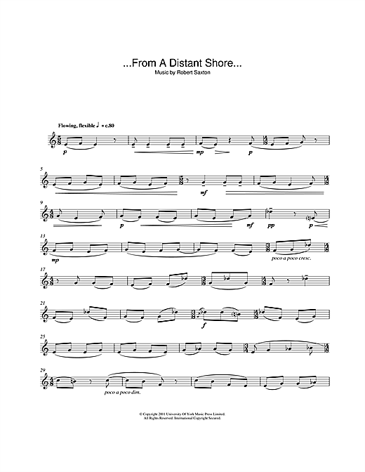 Robert Saxton ...From A Distant Shore... sheet music notes and chords