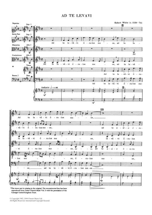 Robert White Ad Te Levavi sheet music notes and chords. Download Printable PDF.