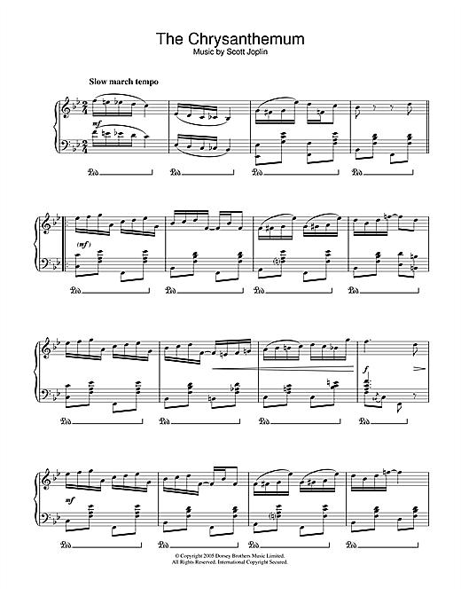Scott Joplin The Chrysanthemum sheet music notes and chords