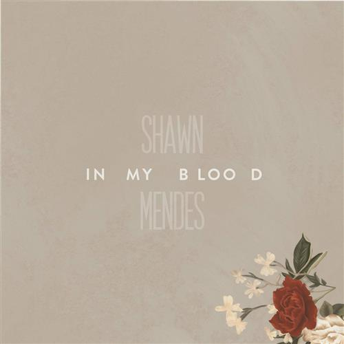 Easily Download Shawn Mendes Printable PDF piano music notes, guitar tabs for  Easy Piano. Transpose or transcribe this score in no time - Learn how to play song progression.