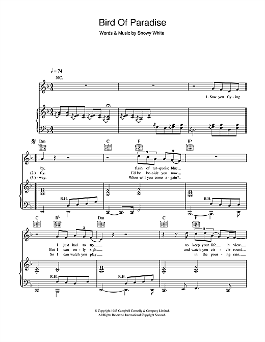 Snowy White Bird Of Paradise sheet music notes and chords. Download Printable PDF.