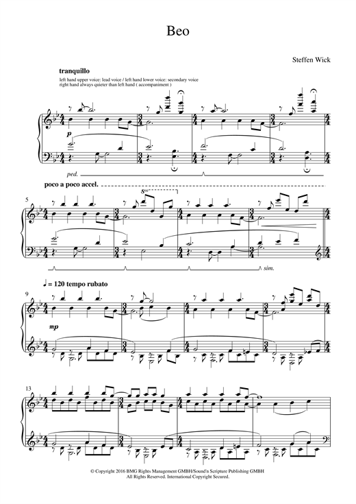 Steffen Wick Beo sheet music notes and chords. Download Printable PDF.