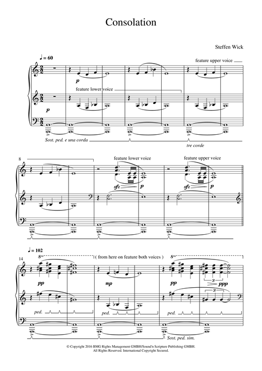 Steffen Wick Consolation sheet music notes and chords. Download Printable PDF.