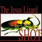 Download The Jesus Lizard 'Blue Shot' Printable PDF 3-page score for Rock / arranged Guitar Chords/Lyrics SKU: 121225.