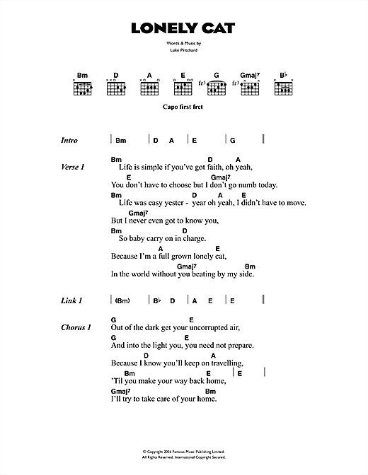 The Kooks Lonely Cat sheet music notes and chords. Download Printable PDF.