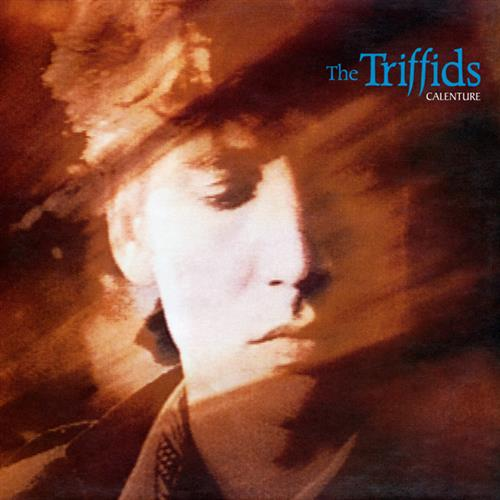 Easily Download The Triffids Printable PDF piano music notes, guitar tabs for Piano, Vocal & Guitar (Right-Hand Melody). Transpose or transcribe this score in no time - Learn how to play song progression.