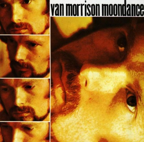 Easily Download Van Morrison Printable PDF piano music notes, guitar tabs for Guitar Lead Sheet. Transpose or transcribe this score in no time - Learn how to play song progression.