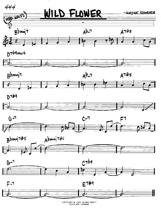 Wayne Shorter Wild Flower sheet music notes and chords. Download Printable PDF.